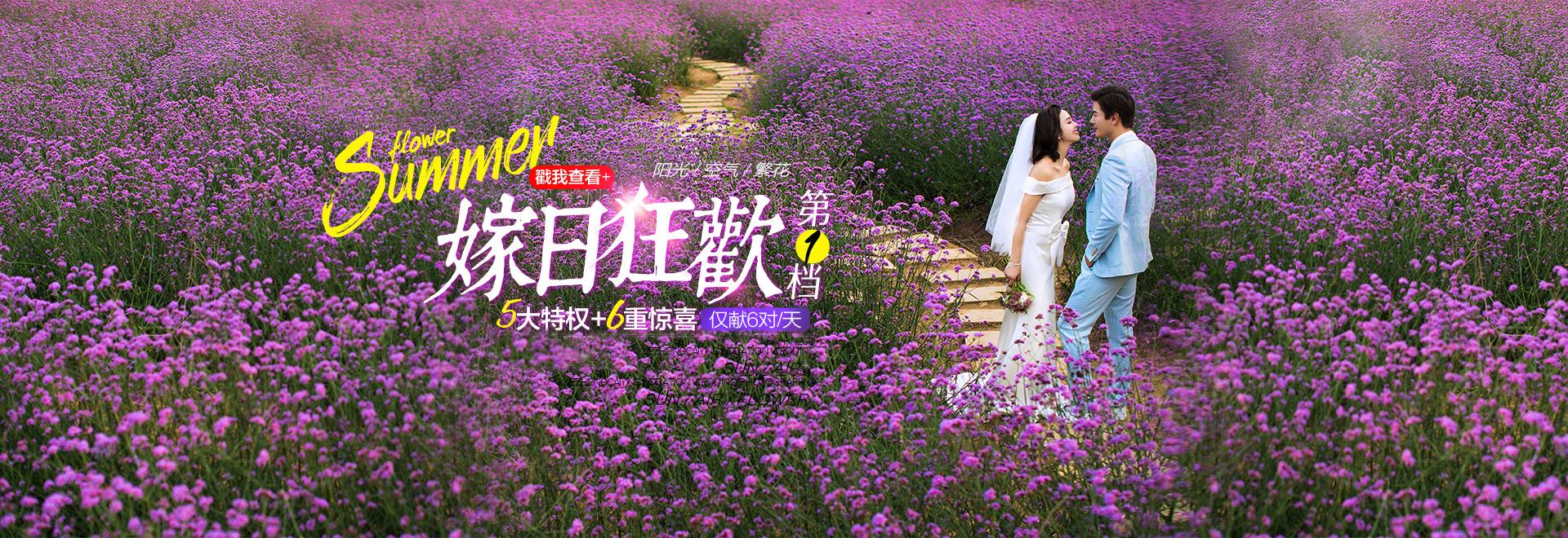 雪中彩影·紫色花海