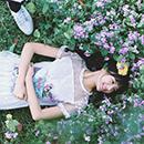 FLOWER-春季花期
