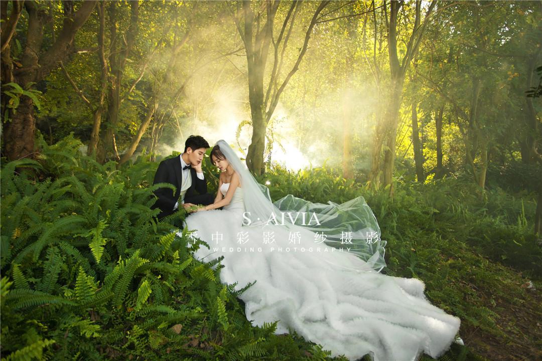 爱的迷雾森林
