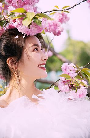 樱花烂漫记